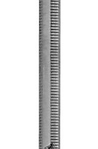 Zahnreiniger Fig. 3